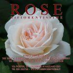 rose-rifiorentissime